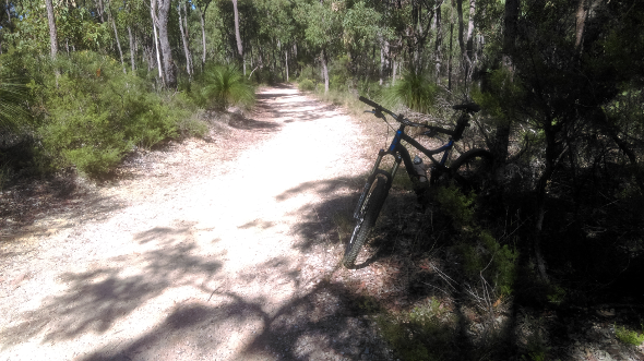 Chermside Hills reserve trail