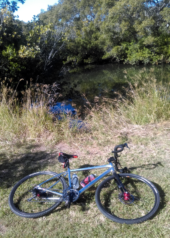 Cycled to a clearing near a creek at Boondall