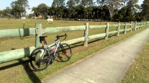 Horse paddock at Bray Park Queensland