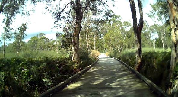 Deagon Wetlands trail