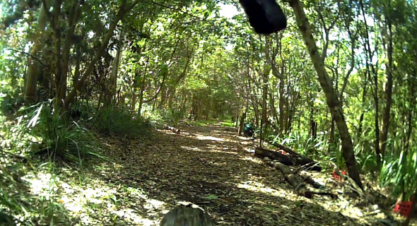 Open trail at Grange Forest Park