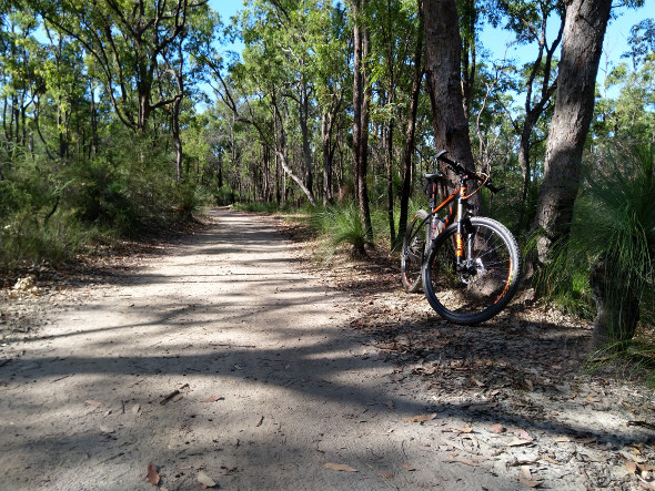 Riding Chermside Hills reserve