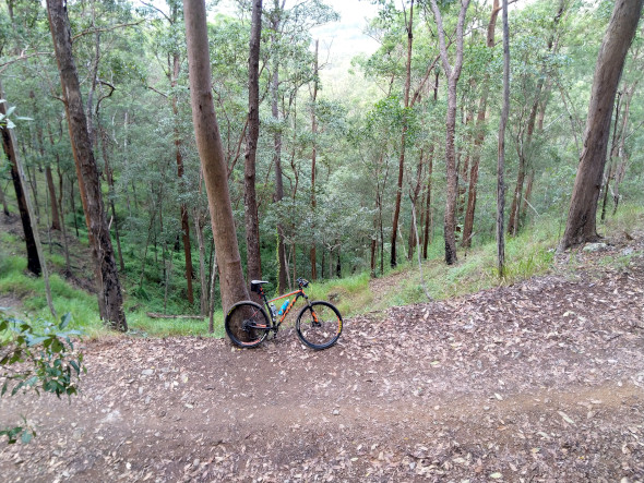 Mountain bike Ironbark gully top
